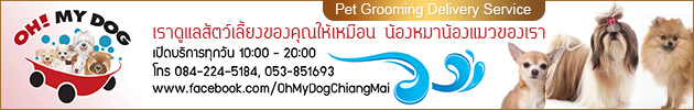 Oh! My Dog, Pet Grooming Delivery Service